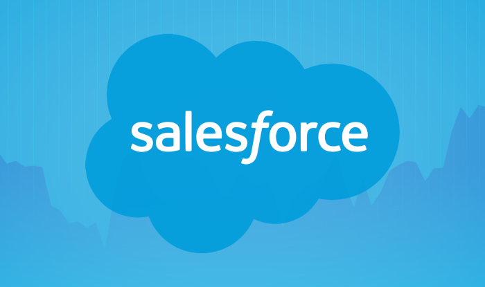 Massively Demanded Tips for Salesforce eCommerce Solution